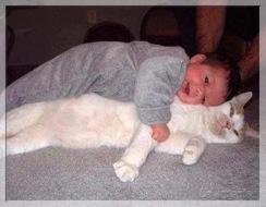 Bebe y Gato.