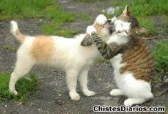 abrazo amistoso